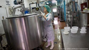 Cheese production in Russia (A. Zemlianchenko, AP)