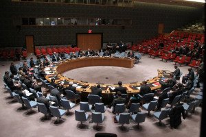 UN Security Council in session (UN photo by Devra Berkowitz)