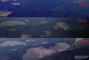 Clearcut logging of Carpathian Mountains in eastern Ukraine, 2014-16