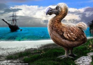 Serious mainstream media gone the way of the dodo bird, says a Globe and Mail reader