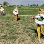 The Kisans Are Right: Their Land Is at Stake (Part 3 of 3)