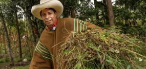 Impoverished hometown is key to Pedro Castillo's politics