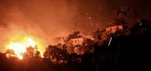 Erdogan under pressure over Turkey's response to wildfires